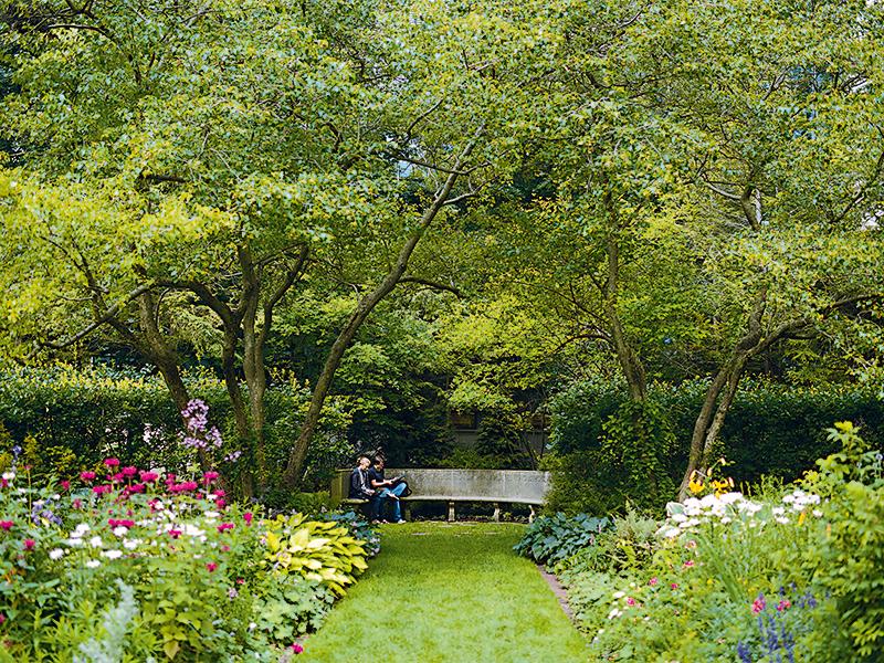 Interior View: The Shakespeare Garden: Weinberg College ...