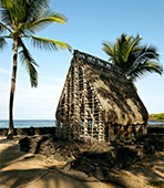thatched house in Hawaii